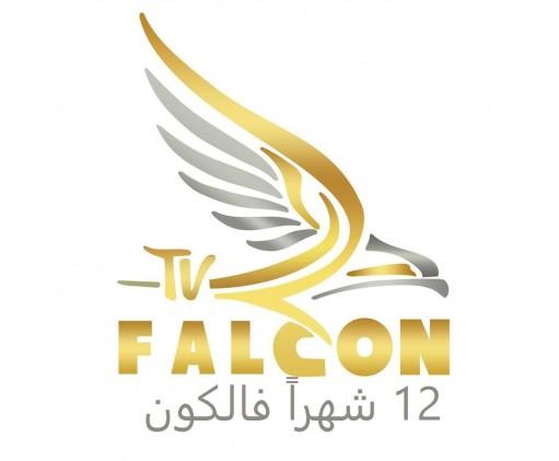 Falcon § 12 months §